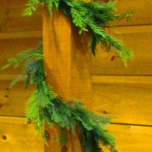 Leyland Cypress Garland 20 ft (2)